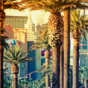 Las Vegas, Nevada, USA - Energy and Emotion Intensive January 2022