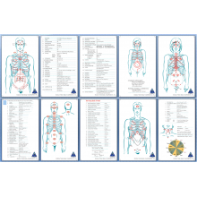 Body Point Reference Cards  (both laminated & digital)
